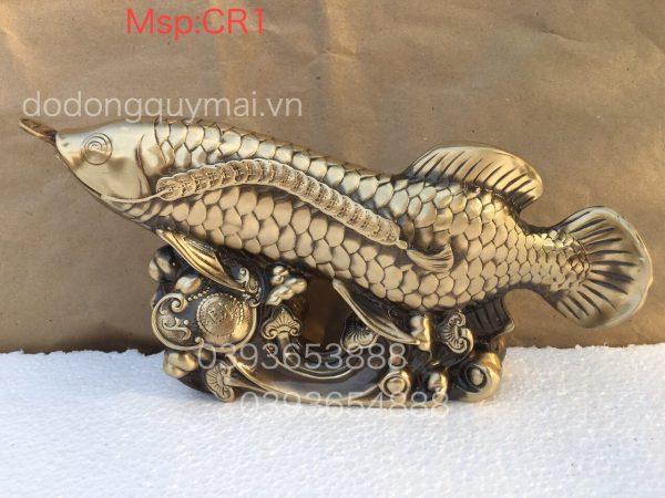 Cá rồng hun bạc cao 18cm mã CR1